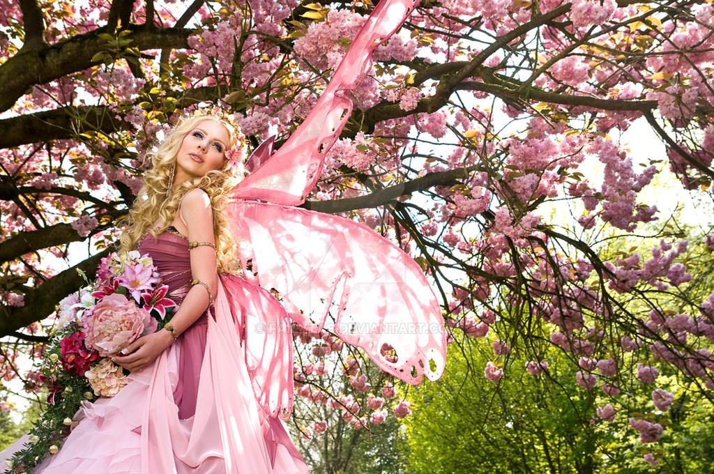 Cherry Blossom 2 by Jolien-Rosanne