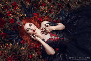Were the wild roses grow by Fairytas