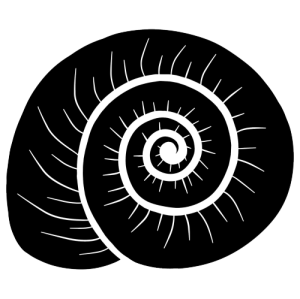 nickromancer's Profile Picture