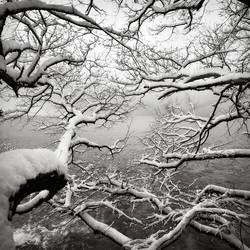 Sea...snow...