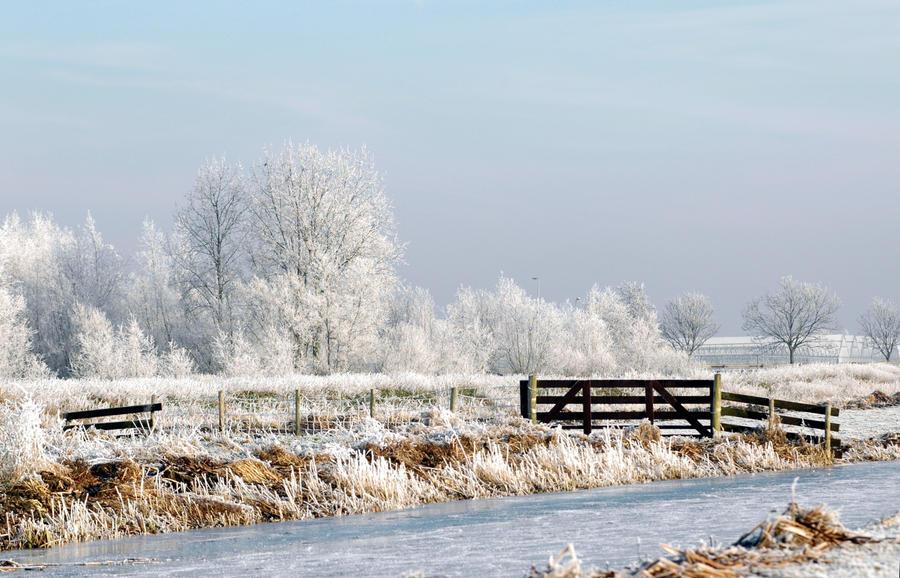 Afbeeldingsresultaat voor holland winter