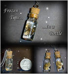 Frozen Time in a Bottle Charms
