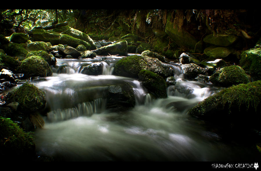 Ross creek 17 by shadowfoxcreative