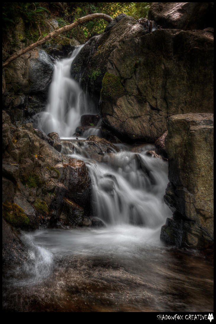 Water of Leith 6 by shadowfoxcreative
