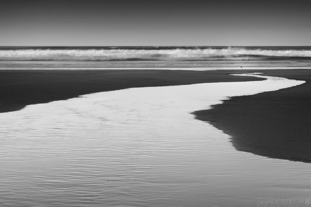Sandfly-bay by shadowfoxcreative