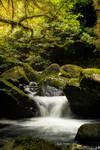 Hidden-places-7-Leith
