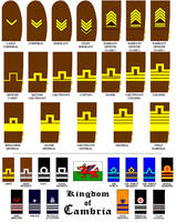 Rank Insignias of Cambria by marcpasquin