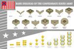 Csa-insignias