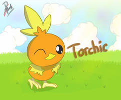 Pokemon Torchic by Ppoint555