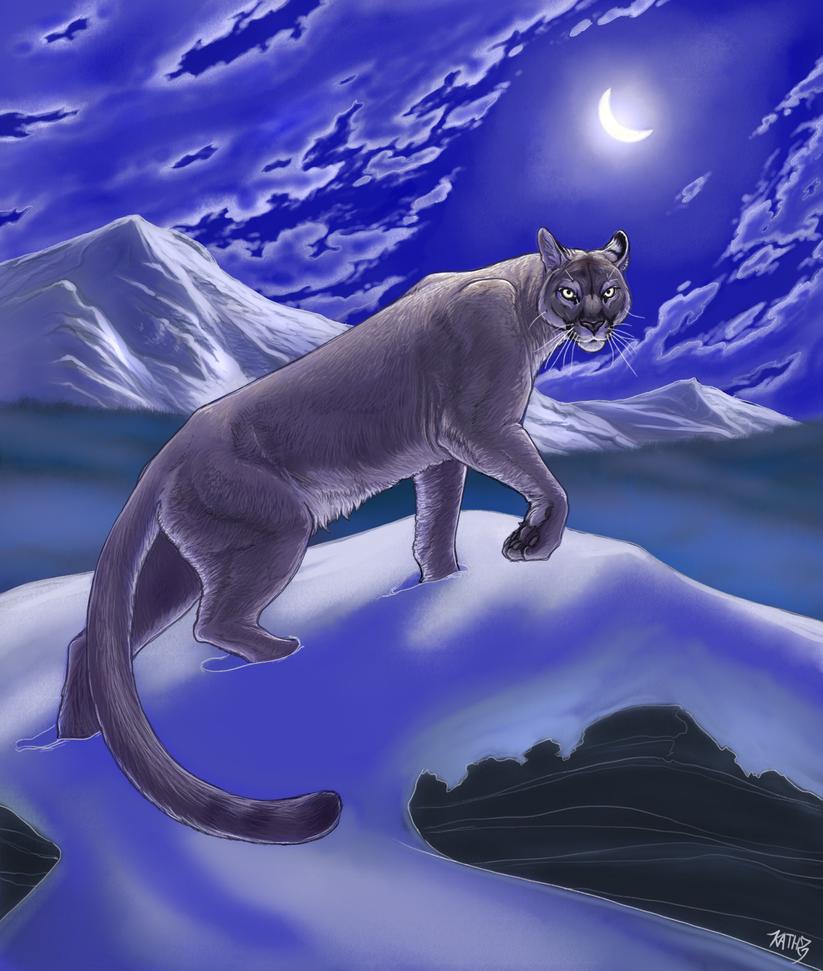 Puma by Relotixke