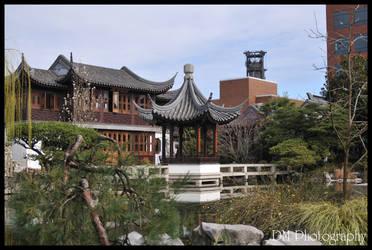 Portland Chinese Gardens IX by davidmoakes