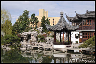 Portland Chinese Gardens XI by davidmoakes