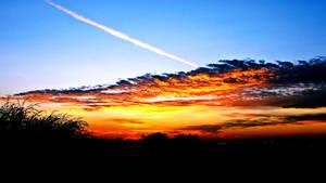 Wondrous Skies