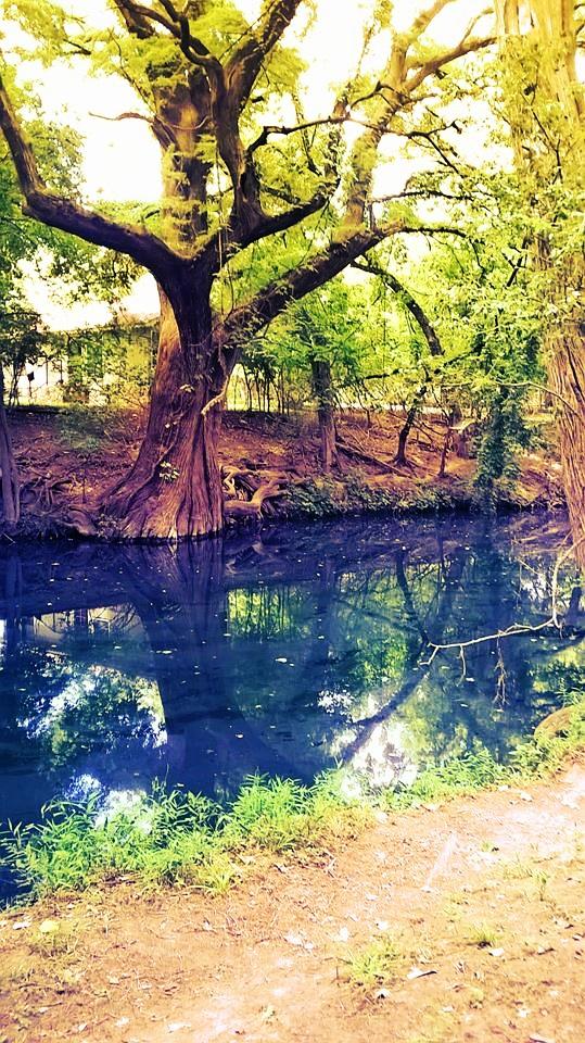 Murky Waters by Identifyed-Khaos