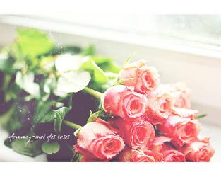 Donnez-moi des roses by unsweet
