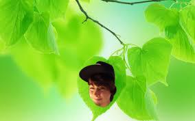 leafy leaked