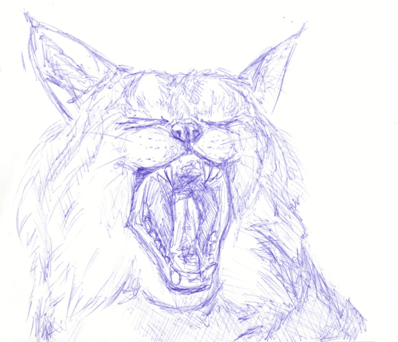 [Blue]  Yawn by LeanasArt