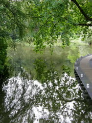 Lake of Reflections (1)
