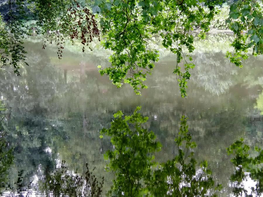 Lake of Reflections (2)