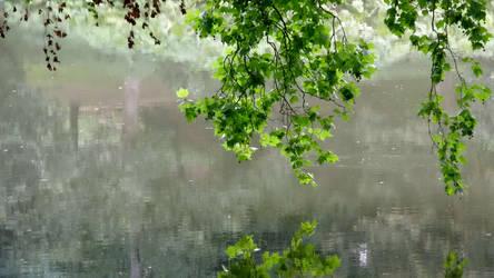 Lake of Reflections (3)