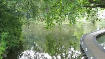Lake of Reflections (4)