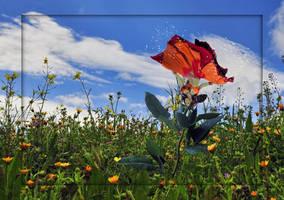 Birth of a Flower Fairy by LindArtz