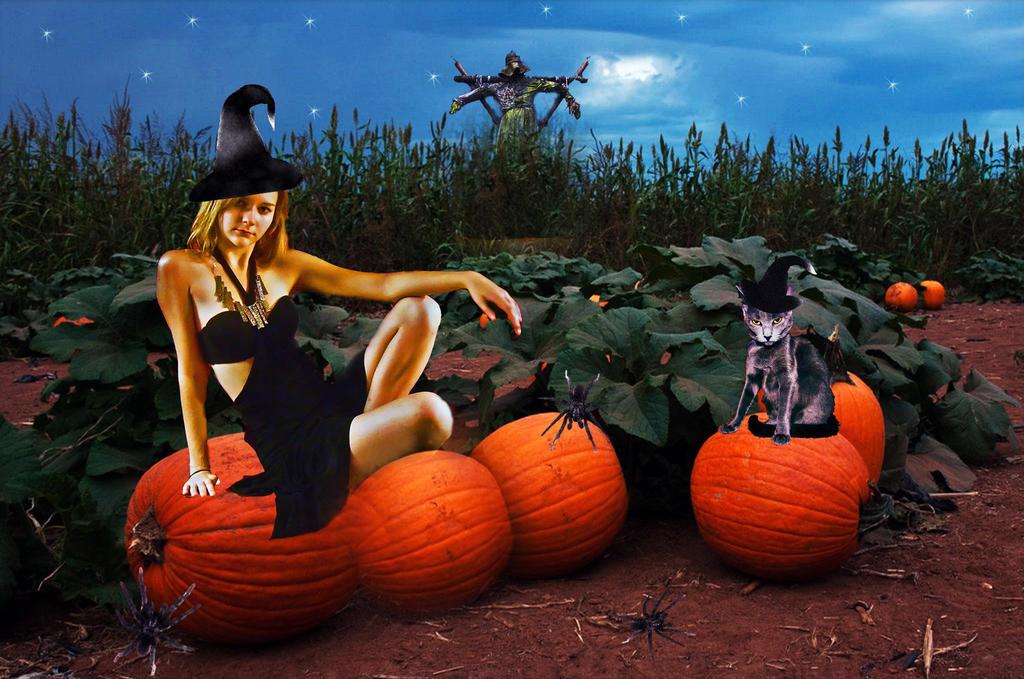 Halloween's Coming!