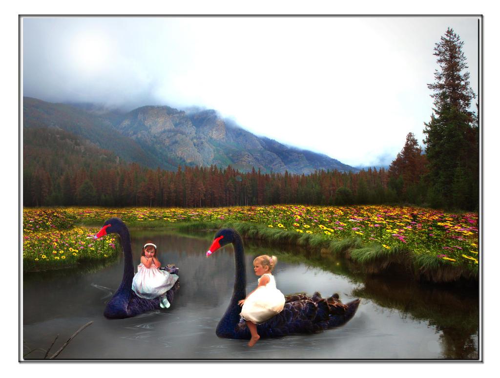 A Swan Lake Moment by LindArtz