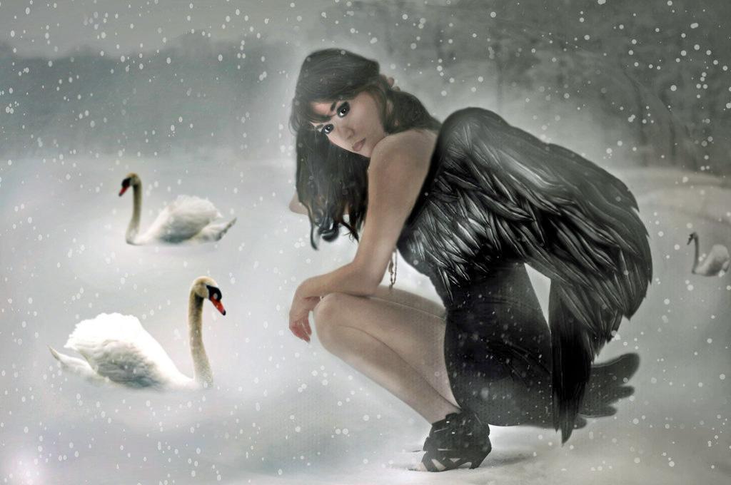 Black Swan   by LindArtz
