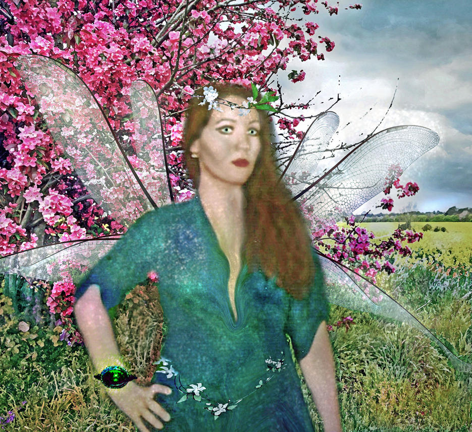 Dragonfly Fairy  I.D.  NOT STOCK by LindArtz