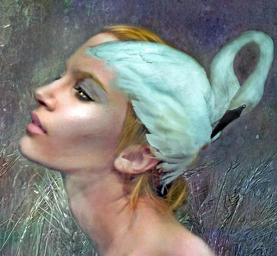 White Swan  by LindArtz