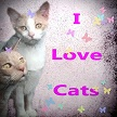 I Love Cats  by LindArtz