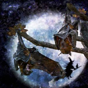 Awaken! You Old Bats!