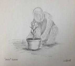 Hairy Potter by zapfogldorf