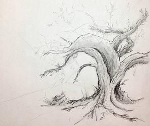 Tree1 by zapfogldorf
