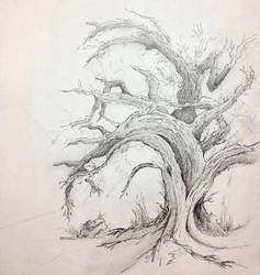 Tree2 by zapfogldorf
