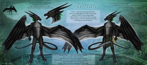 Torian ref-sheet by Selianth
