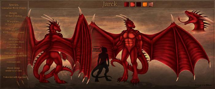 Charsheet: Jarek