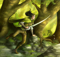 LotR - Taking Initiative by MelissaFindley