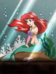 Ariel Aquarium