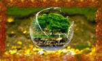 Tree-in-a-sphere