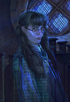Harry Potter and the Chamber of Secrets -FanArt-10