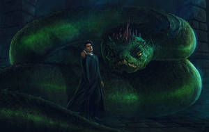 Harry Potter and the Chamber of Secrets -FanArt 19