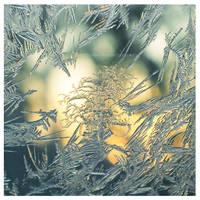 frozen by Berrycake