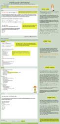 I got a CSS Journal, now what? by SilverPixiGirl
