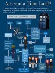 Time Lord Info-Graphic