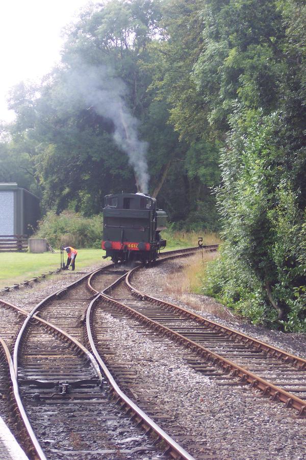 Bodmin Parkway- Steam Train by CooroSnowFox