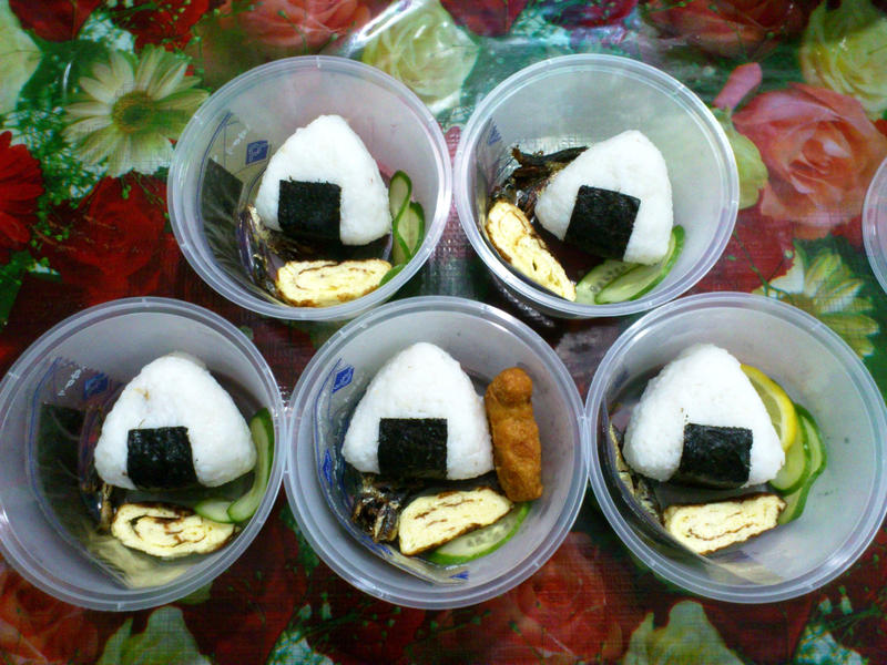 home-made product samples by plainordinary1