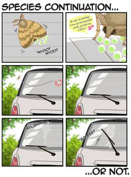 Unconventional Moth
