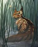 Creekside Queen | Mothwing | Warriors Fanart